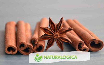Essenze naturali antivirali