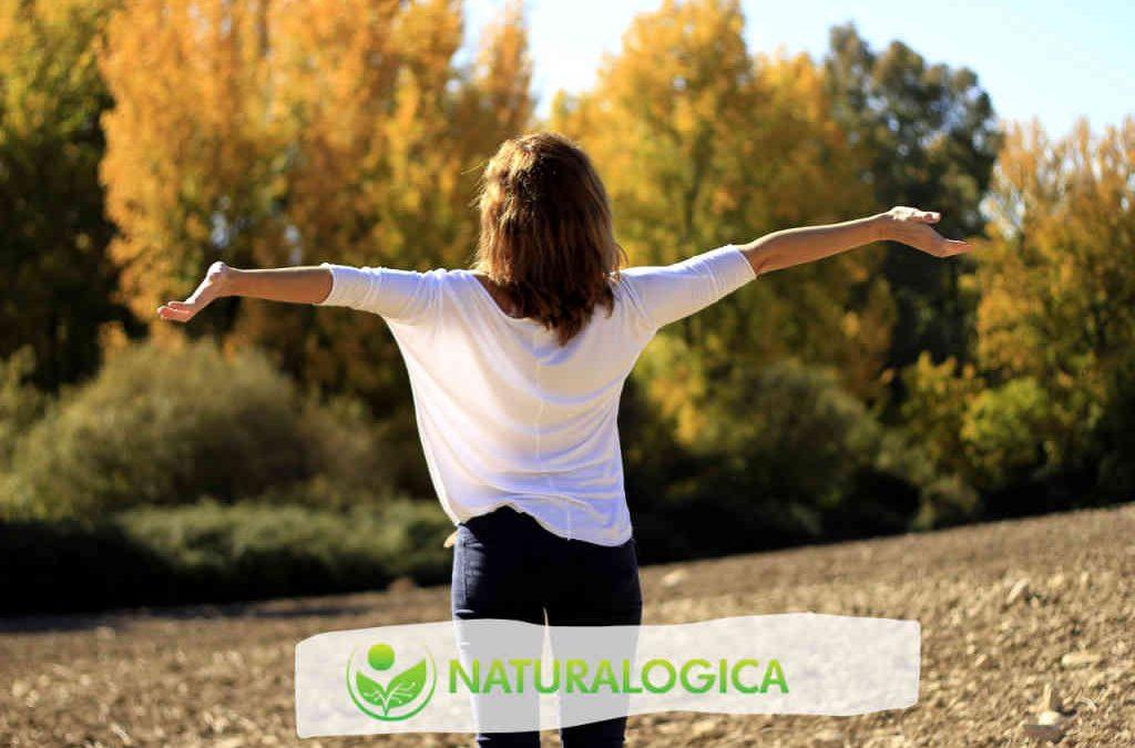 Olio essenziale di eucalipto per suffumigi e inalazioni – 3 ricette pratiche.