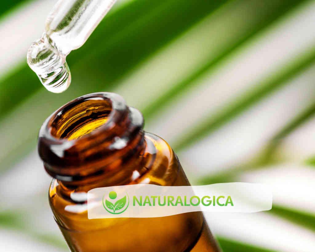 Tea tree oil uso benefici e controindicazioni