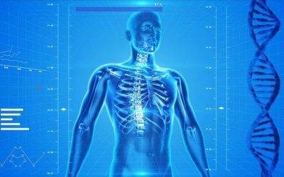 Appunti di anatomia per scienze e tecnologie farmaceutiche